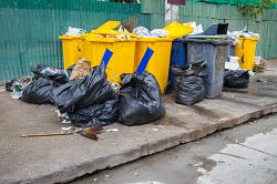 Rubbish Removal Services in Pimlico